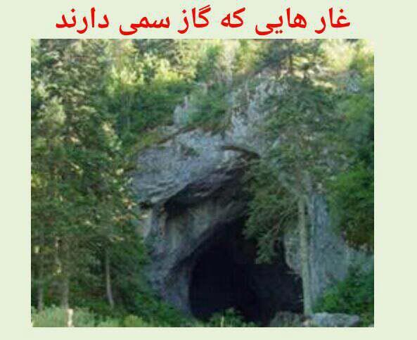 گاز سمی و شناخت غارها و تونل های زیرزمینی دارای  گاز سمی
