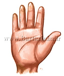 اسرار و رازهای کف بینی خطوط برجسته بر روی کف دست و انگشتان نشانه چیست؟