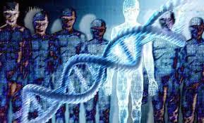 موجودیت انسان و تکامل - آیا انسان نتیجه تکامل از میمون بوده یا تغیر ژنوم فرازمینی ها روی ما بوده ؟