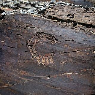 کارشناسی نماد بز کوهی و قوچ در گنج و دفینه یابی تفسیر علائم و نشانه