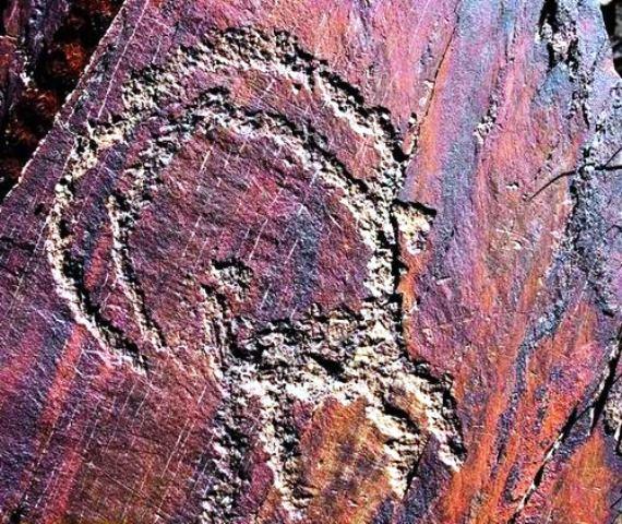 تفسیرو بررسی نماد بز کوهی و قوچ در یافتن گنج
