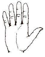 image, آموزش کامل تصویری فال کف بینی با خط های کف دست