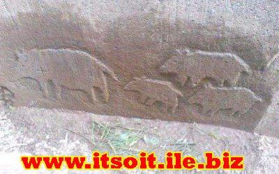 کارشناسی علامت سنگ خوک و بچه خوک در گنج و دفینه یابی رمزیابی معنی و مفهوم