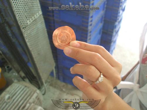 سکه های تقلبی و سو استفاده کلاهبرداران