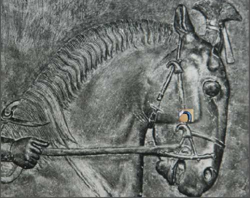 عکسهای کشف اجساد سربازان ایرانی دوران پادشاه هخامنشی ایران باستان در صحرای مصر