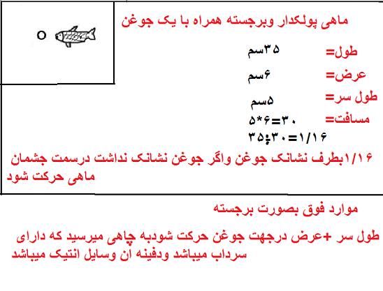 معنی نشانه سنگ ماهی در گنج و دفینه یابی,علامت و نماد ماهی نشانه چیست؟