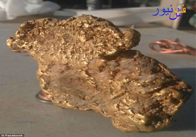 کشف گنج طلا
