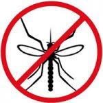 اذکار قوی برای دفع حشرات موذی