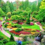 تعبیر خواب دیدن باغ دیدن ، معنی باغ دیدن در خواب