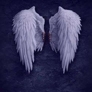 wing-sleep