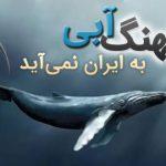 بازی نهنگ ابی به ایران نمی آید و امکان دانلود بازی نهنگ آبی وجود نخواهد داشت