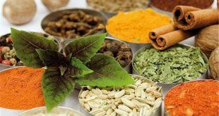 عرقیات گیاهی برای درمان سنگ کلیه و روش پیشگیری و درمان سنگ کلیه در طب سنتی