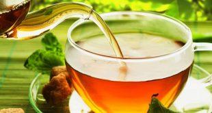 خواص درمانی دمنوش گیاه گشنیز از درمان بیماری دیابت یا قند خون تا دفع سنگهای کلیه و مثانه
