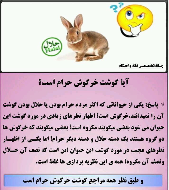 خوردن گوشت خرگوش بنا بر فتوای مراجع تقلید شیعه چه حکمی دارد؟