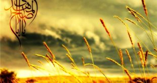 چرا لقب نور خدا به امام زمان (عج) داده اند ؟