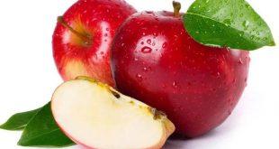 خواص و فواید شگفت انگیز سیب برای سلامتی از تقویت سیستم ایمنی بدن تا کاهش کلسترول