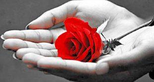 با چه راهکارهایی می توانیم از افراط در محبت کردن جلوگیری کنیم؟ روشهای رسیدن به اعتدال و میانه روی