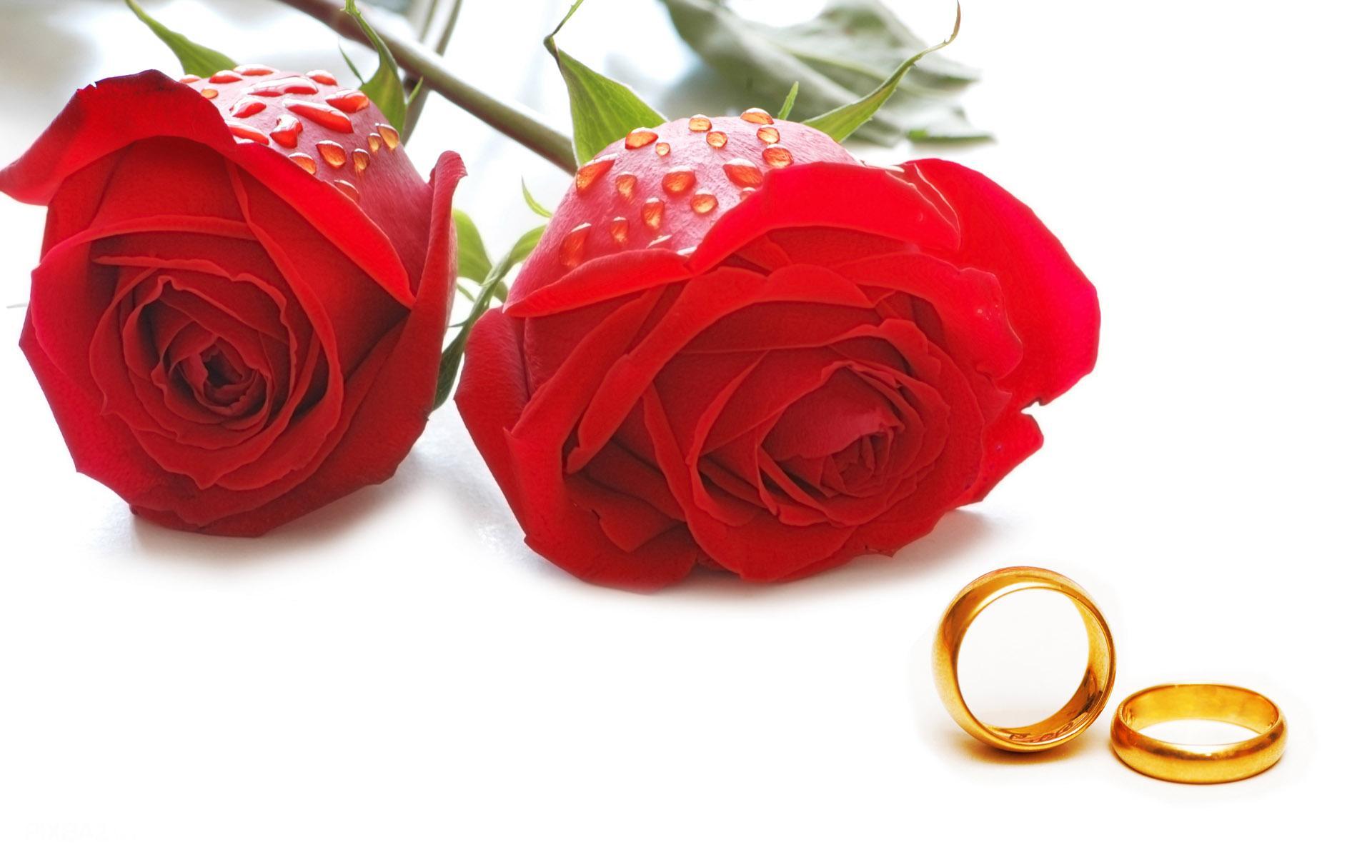 اهمیت و فواید ازدواج و تشکیل خانواده از دیدگاه قرآن و آیه قرآنی درباره ازدواج کردن
