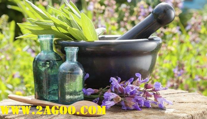 آشنایی با بهترین گیاهان دارویی موثر ضد استرس و اضطراب