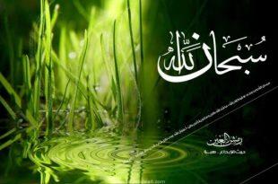 آیه آرامش دهنده - سوره ای از قرآن برای آرامش دل